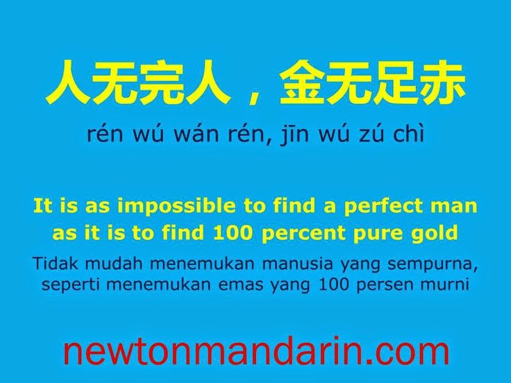 newtonmandarin.com: Looking for a perfect man?