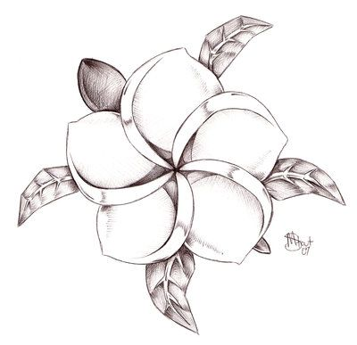 Koi S Plumeria Turtle By Mistyz23 On Deviantart - Free Download Tattoo #12208 Koi S Plumeria Turtle By Mistyz23 On Deviantart With Resolution 400x387 Pixel | WakTattoos.com