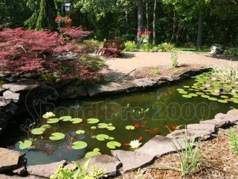 98 best pond repair images on pinterest epdm pond liner for Backyard pond maintenance