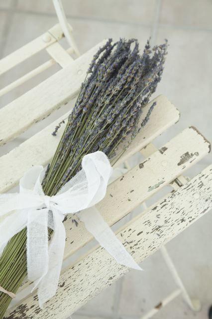 ~: Lavender Dreams, Lavender Flowers, Lavender Lavande Lavendel, Lavender Provence France, Fleurs Lavender, Lavendel Bord, Home Part Deux, Of Lavanda