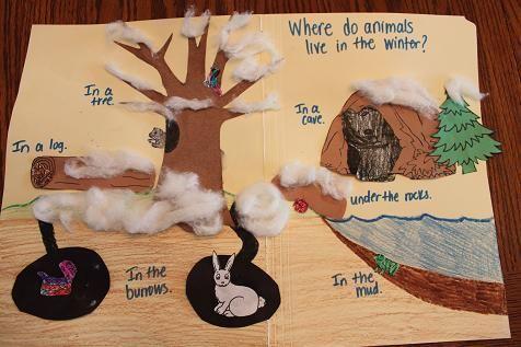 hibernation lesson plan ideas - Google Search