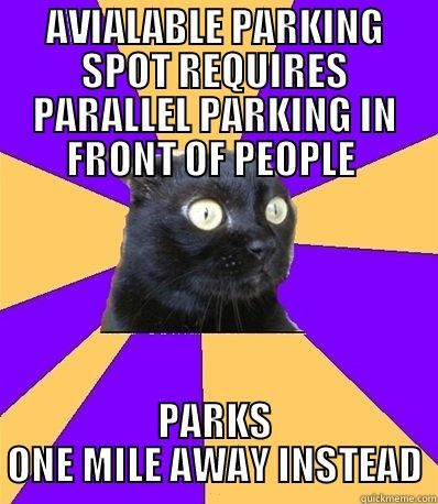 Anxiety Cat. Available parking spot requires parallel parking in front of people.  Parks one mile away instead.