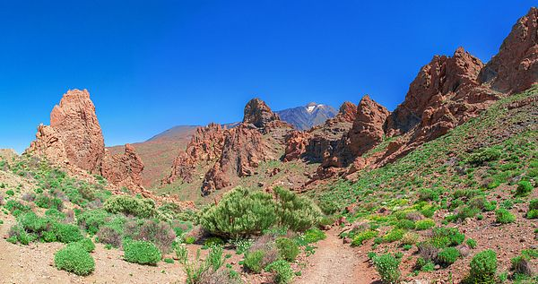 Volcanic rocks in front of Mount Teide in the Teide National Park on Tenerife