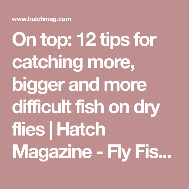 On top: 12 tips for catching more, bigger and more difficult fish on dry flies   Hatch Magazine - Fly Fishing, etc.
