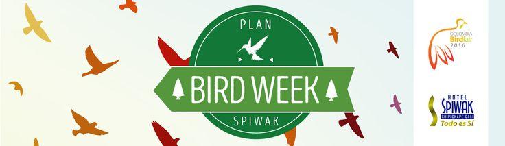 Somos patrocinadores del segundo evento del BIRD FAIR. Este jueves tendremos un cóctel de bienvenida para amenizar la estadía de nuestros espectadores en el BIRD WEEK.