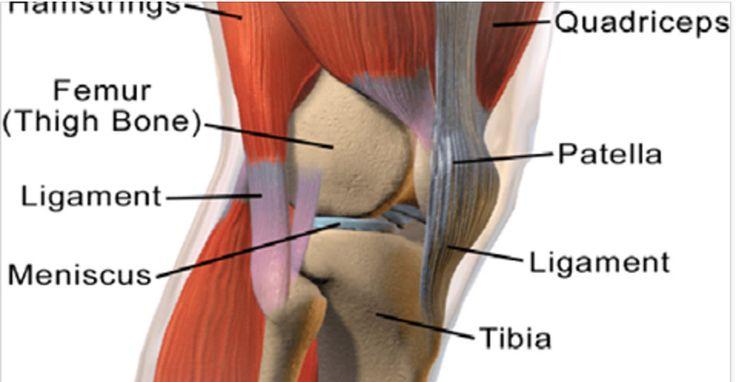 Artrite, artrose e reumatismo são doenças que se caracterizam por inflamações nas articulações, principalmente nos joelhos e nos ombros.