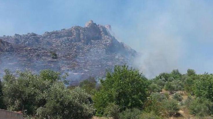 """Kozan Kalesi'nde korkutan yangın  """"Kozan Kalesi'nde korkutan yangın"""" http://fmedya.com/kozan-kalesinde-korkutan-yangin-h56556.html"""