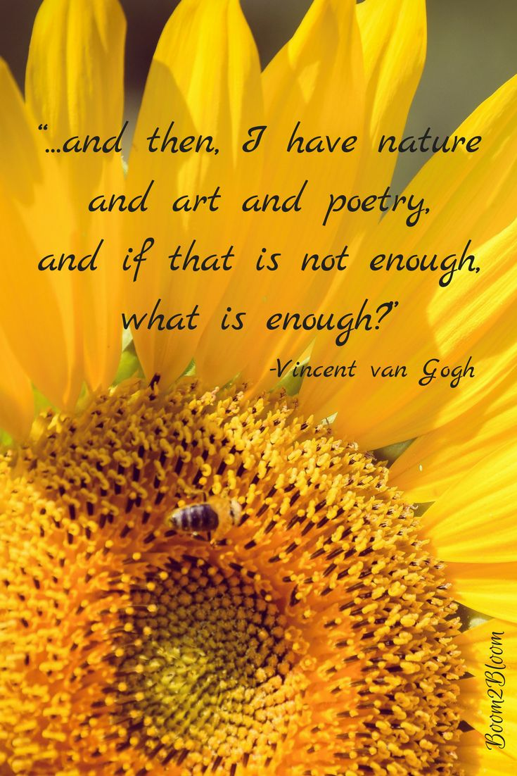 ...and then, I have nature and art and poetry, and if that is not enough, what is enough? Quote by Vincent van Gogh. #Nature #Art #Poetry #VanGogh #Quotes