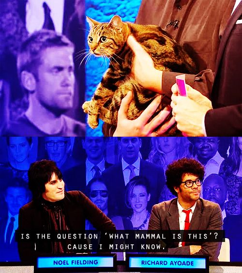 Noel Fielding and Richard Ayoade - Big Fat Quiz of the Year