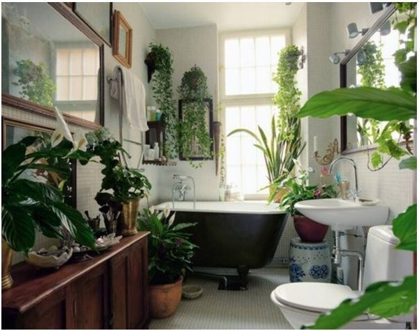 Design Tricks: Add plants to your living space. Add them to every room, small or large, few or many. Plants are an inexpensive means to accessorizing your space and adding color and texture. Not only are plants beautiful but many can clean household air and balance humidity. They can absorb pollutants and remove harmful gases from the air. That's right! Plants, plants, and more plants!
