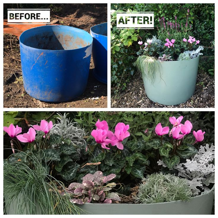 I recycled some ugly blue plastic tubs into pretty planters! #gardening #garden #gardens #DIY #landscaping #home #horticulture #flowers #gardenchat #roses #nature