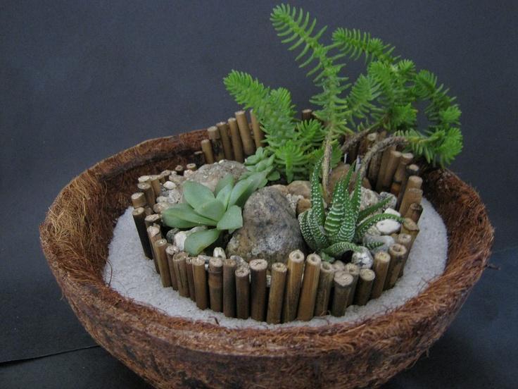 mini jardim de vidro : mini jardim de vidro:Lourenço Paisagismo: Mini-Jardins de Suculentas em Jarro de Fibra de