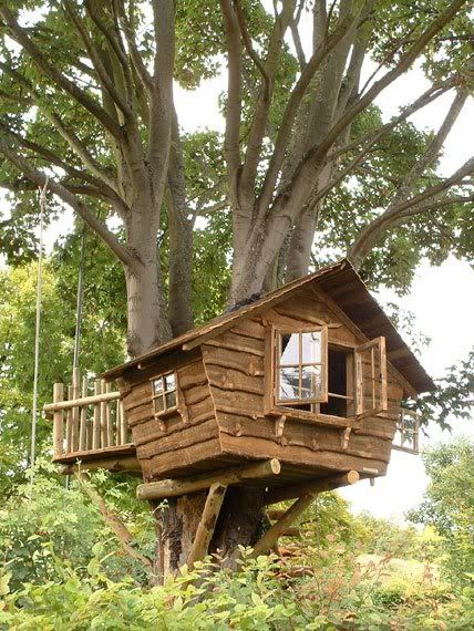 Treehouse Inspiration- I've always dreamed of a cozy little treehouse in a colorful autumn tree.  The perfect little hideaway for our twin toddlers.  #katequinnnursery