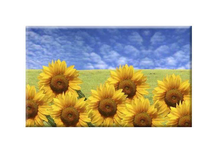 Tablouri f.soarelui 2120- Tablouri flori- etablou.ro