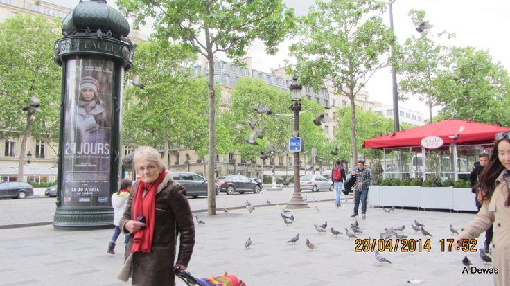 Paris viewed in 2014