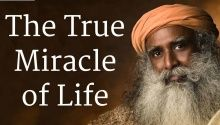 """In this New Year Spot, Sadhguru asks, """"Have you loved, laughed and teared up/or have you remained untouched by life."""" A photo gallery of photos accompanies the Spot. Enjoy!"""