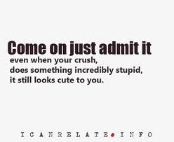 Come on just admit it. Even when your crush, does something incredibly stupid, it still looks cute to you. Yes I admit it :)