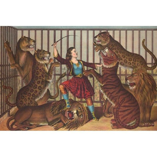 """19th-C. """"The Lion Queen"""" Circus Print ($141) ❤ liked on Polyvore featuring home, home decor, wall art, prints, leopard home decor, leopard wall art, tiger wall art, unframed wall art and lion wall art"""