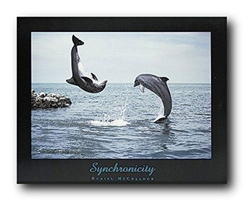 Add this beautiful wall poster into your home which will bring cheer of amazing Synchronicity dolphin ocean sea animal wall decor picture art print poster. This beautiful poster captures the image of bottlenose dolphins jumping upon the water which surely make this wall art centre of attraction. This beautiful poster is sure to mesmerize you and your guests. It will also make a great gift for those love underwater animals. Hurry up! Order this poster for its high quality with a high degree…
