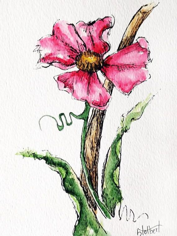 Original Artwork Of A Pink Rose Rendered In Pen Ink And