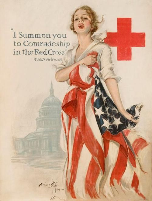 Assignment 3: The American Red Cross (ARC)