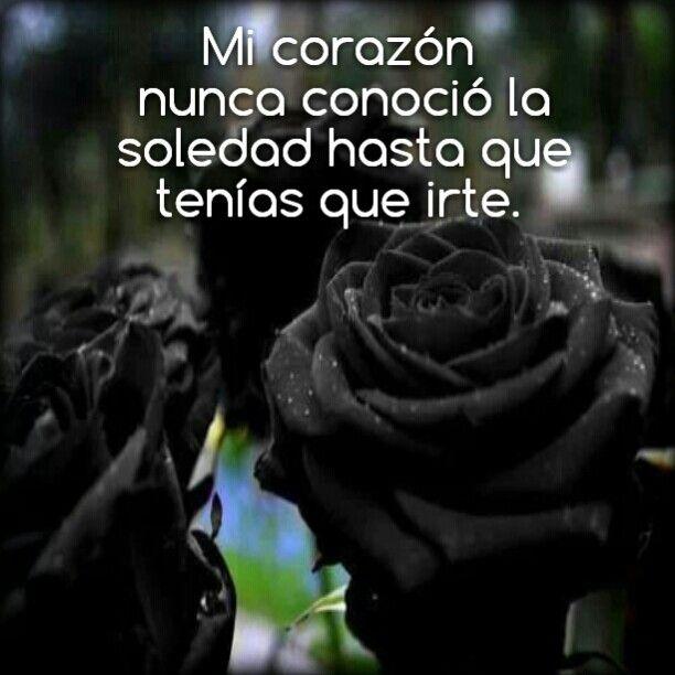 Imágenes De Rosas Negras Con Frases Tristes Mi Amor En