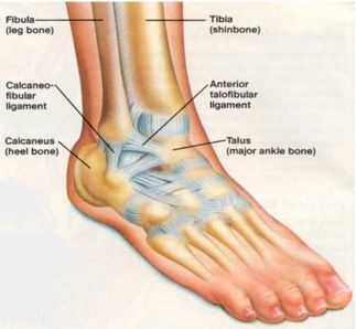 Sprained ankles happen. If not taken care of right away, they can lead to bigger problems down the road. http://medspring.com/