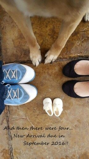 Pregnancy announcement with our German Shepherd