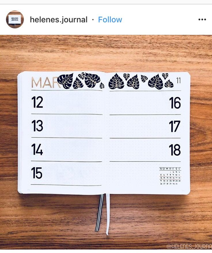20 Weekly Bullet Journal Spreads That'll Keep You Organized – Natalie Linda