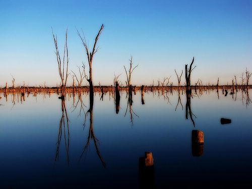 Reflections on Lake Mulwala