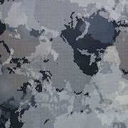 Worldscape  grå