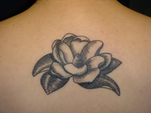 simple magnolia, although I'd place it differently.