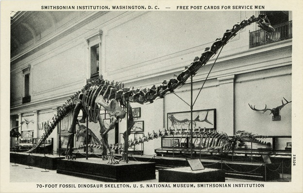 National Museum Of Natural History Washington