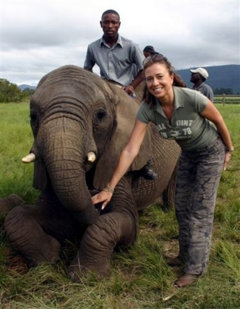 Elephant Experience - The first of its kind in South Africa, Knysna Elephant Park provides a home for orphaned elephants. Experience an intimate meeting with these intelligent, gentle giants in their free-range Riding...