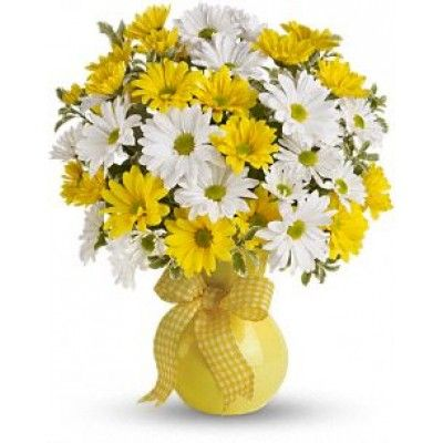 @ FDH Upsy Daisy @  The bright bouquet includes white daisy spray chrysanthemums, yellow daisy spray chrysanthemums and bupleurum accented with fresh greenery.