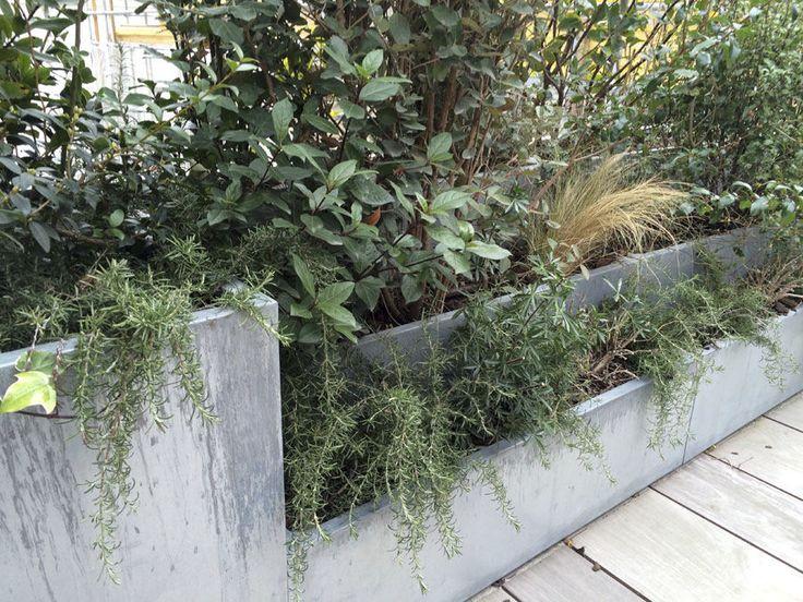 17 meilleures id es propos de bac jardiniere sur pinterest bacs plantes bac fleurs et. Black Bedroom Furniture Sets. Home Design Ideas