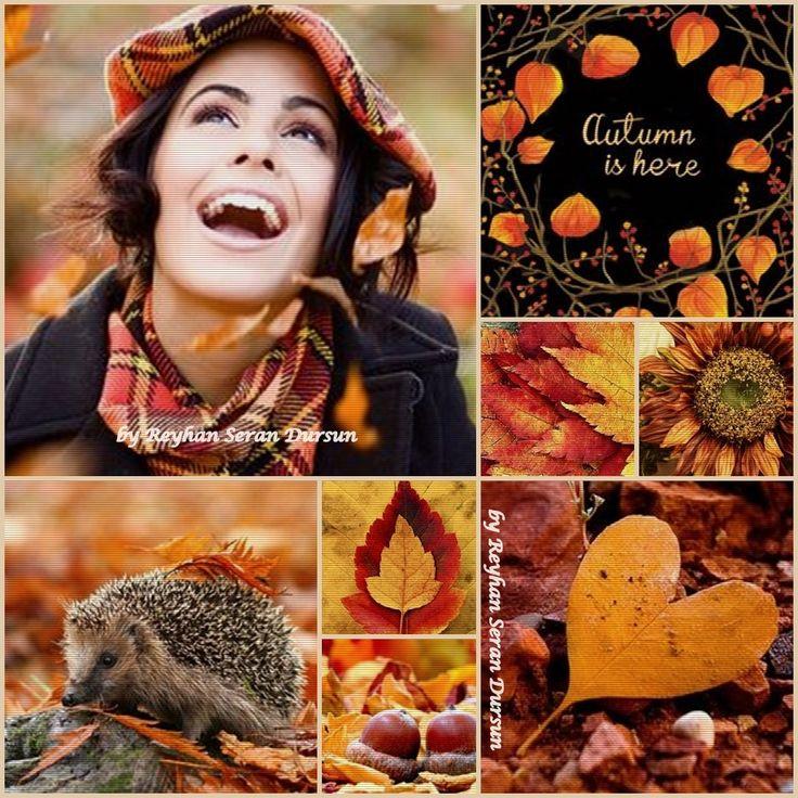 '' Autumn is here '' by Reyhan Seran Dursun