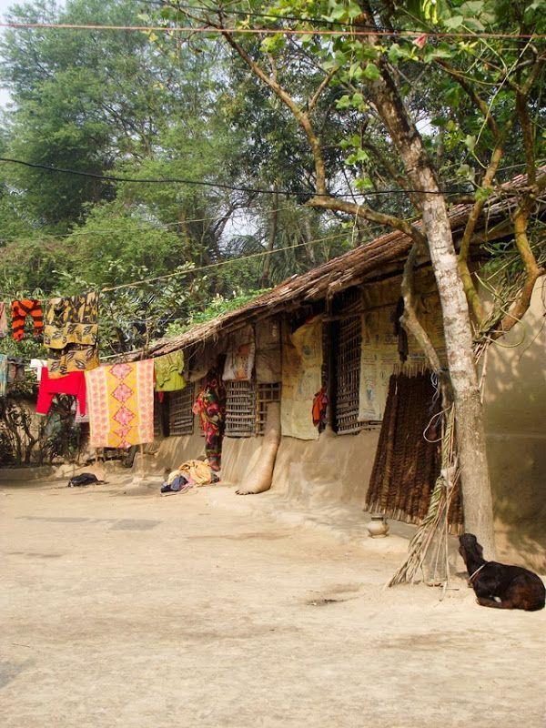 Bangladesh Village In Pictures Parti Village Photography In 2020 Village Photography Village Photos Indian Village