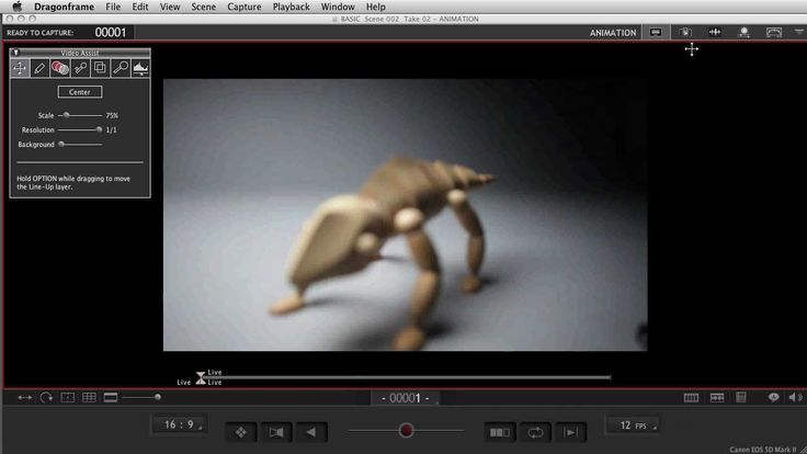 Dragonframe stop motion software 3.0 - How It Works