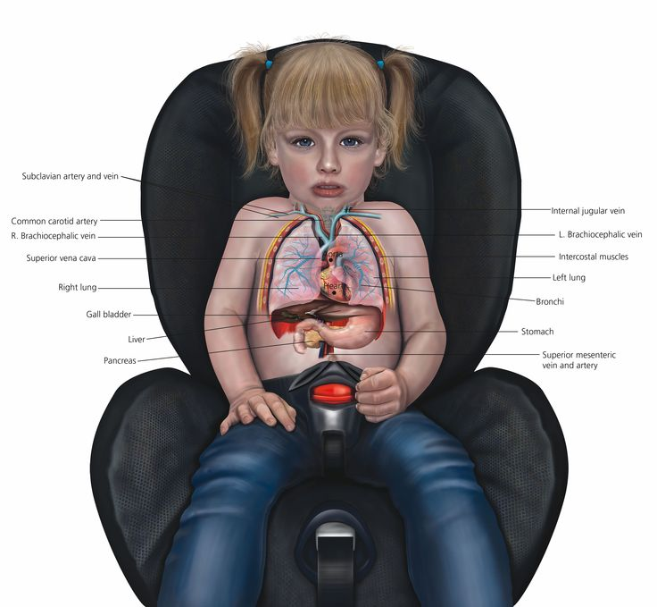 Us Car Seat Without Chest Clip