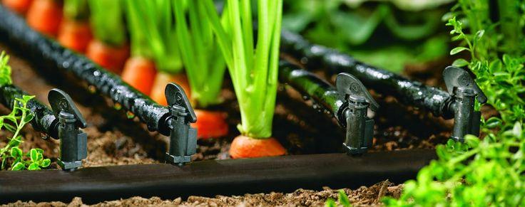 Sukses atau tidaknya menanam sayuran sangat bergantung sekali dengan pengairan atau sistem irigasi dari tanaman sayuran. Petani terdahul...