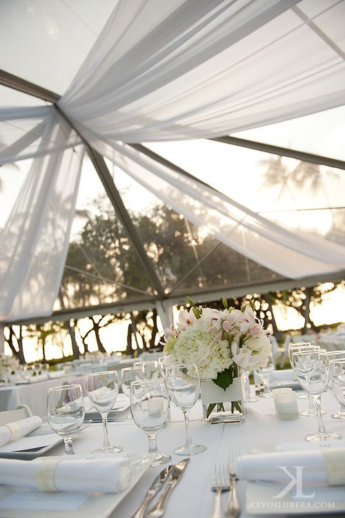 lanikuhonua_wedding_reception - cheaper alternative to canopies