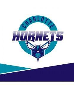 Charlotte Hornets Split PlayStation Gaming Skins
