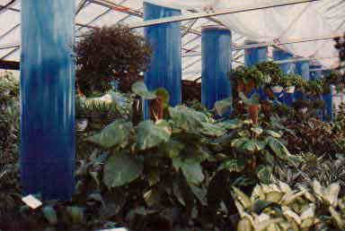green house hot water storage tanks for efficient solar thermal energy storage