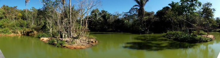 Parque Zoobotanico de Teresina .