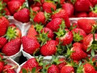 How do you grow strawberries? Which strawberry varieties are the sweetest. See our gardening video.