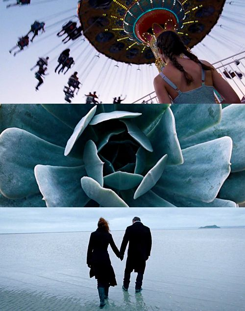 To the Wonder - Terrence Malick.  One of the best director and DP collars in the business