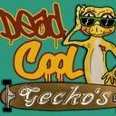 Hobby kweeker war wij onze luipaardgekko 'slimpie' hebben gekocht. Hobby breeder of: Leopard gecko's, Crested gecko's, Chinese cave gecko's and Australian knobtail...