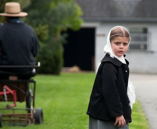alternative healthcommunity are often confused by the lack ofautismin theAmishpeople. The Amish don't vaccinate.