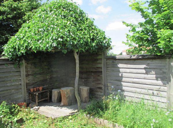 Kiosque au toit de lierre,  10 ans de patience ... la nature a horreur d'aller vite !